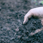 堆肥とは何?堆肥の作り方(落ち葉・生ゴミ・牛ふん)