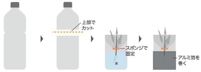 ペットボトルの用意方法