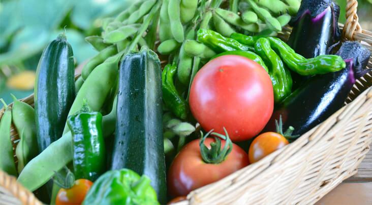 野菜の栽培方法
