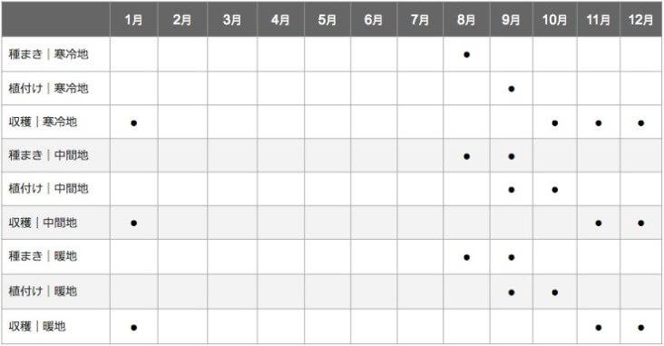 白菜の栽培スケジュール表