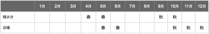 カラシナの栽培カレンダー