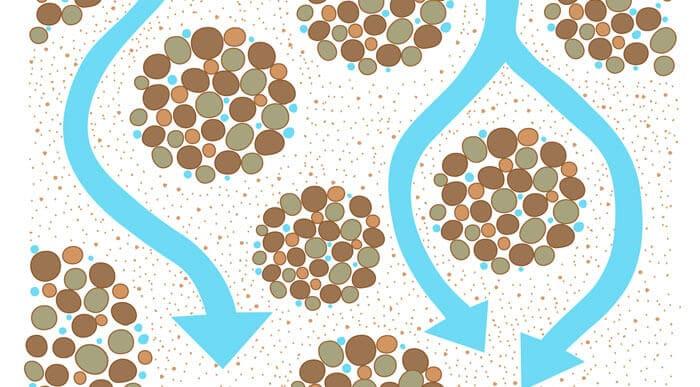 堆肥による土壌改良の様子